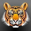 Realistic Tiger — Stock Vector