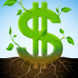Growing dollar symbol like plant with leaves and roots — Stock Vector #28102841