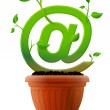 Growing mail symbol like plant with leaves in flower pot — Stock Vector