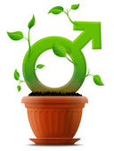 Growing male symbol like plant with leaves in flower pot — Vector de stock