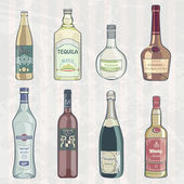 Vintage Set of Alcohol Bottles — Stock Vector