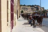 Carriages queue on Valletta harbor street — Stock Photo
