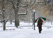 A man with colored umbrella walking in a snowy park — Stock Photo