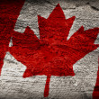 Stock Photo: Canadiflag painted