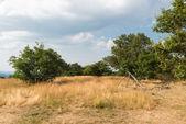 Prachtige landschappen bij bismantova stone — Stockfoto