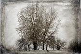 Vintage Winter Landscape — Stock Photo
