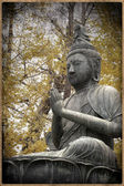 Buddist Meditation — Stock Photo