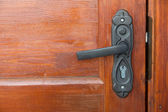 Door handle — Foto de Stock