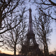 Eiffel Tower through Tree Branches at Dusk — Stock Photo