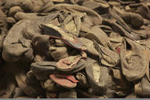 Auschwitz - Shoes — Stock Photo