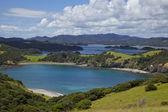 Bay of Islands — Stock Photo