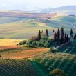 Rolling Tuscan hills and farmhouse - Stock Photo