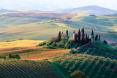 Rolling Tuscan hills and farmhouse — ストック写真