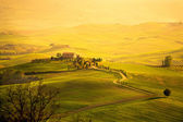 Spring in the Tuscany — 图库照片