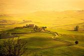 Lente in de toscane — Stok fotoğraf