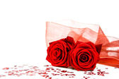 Two roses to the Valentines day — Stock Photo