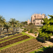 Cathedral of SantMariof Palma, Majorca — Stock Photo #18239975