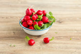 Bunch of fresh radishes in a bowl — Stock Photo