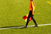Female soccer referee — Stock Photo