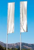 Two white flag — Stock Photo