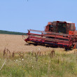 Combine harvester working in a field — Stock Photo