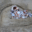 Lots of colorful shells and coral on the sand. Sand in the form of heart. — Stock Photo #35980079