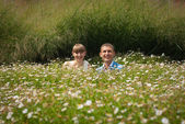Bride and groom in a field of daisies — Stock Photo