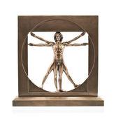 Vitruvian man of Leonardo Da Vinci — Stock Photo
