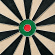 Dart board — Stock Photo #24059985
