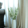 White flowers in a vase — Stock Photo #36531595