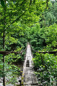 Viejo puente de madera — Foto de Stock