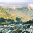 Rice terraces in Junnan — Stock Photo