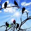 Stock Photo: Birds silhouette sitting on branch sky sun and clouds in b