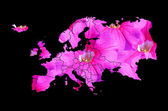 Mapa europy — Zdjęcie stockowe