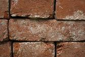 Brick background — Foto de Stock