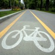 Royalty-Free Stock Photo: Bicycle lane