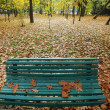 Empty autumn bench — Foto Stock
