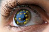 Olho de euro — Foto Stock