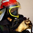Stock Photo: Fire fighter saving cat