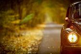 Autumn vintage car — Stock Photo