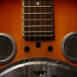 Stock Photo: Dobro Guitar
