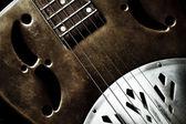 Dobro Guitar — Stock Photo