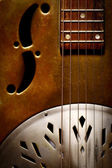 Dobro Guitar — Stock Photo