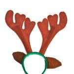 Reindeer horns — Stock Photo