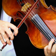 Stock Photo: Playing viola