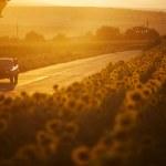 Car at sunset — Stock Photo #29002315
