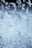 Ledové květy — Stock fotografie
