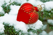 Christmas ball on snow — Stock Photo