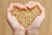 формы сердца из пшеницы — Стоковое фото
