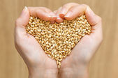Heart shape from wheat — Photo